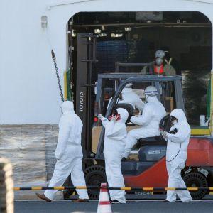 Suojavarusteisiin pukeutuneet työntekijät vievät Diamond Princess -risteilijälle elintarvikkeita Jokohamassa Japanissa.