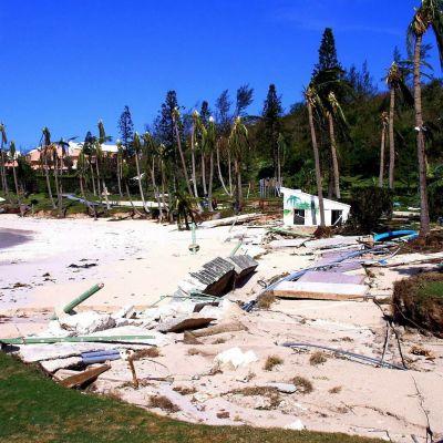 förödelsen efter orkanen Fabian i bermuda