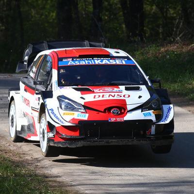 Sebastien Ogier kör i Kroatien.