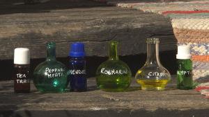 Flaskor i olika färger innehållande eteriska oljor.