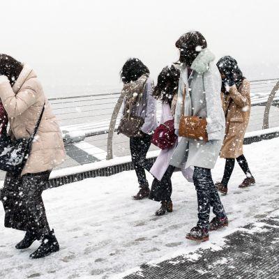 Turistit kävelevät lumimyrskyssä Lontoossa