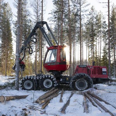 Hakkuukone kulkee lumisessä metsässä