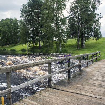Nurmonjoen virtaumaa Ruuhikosken golfkentällä.