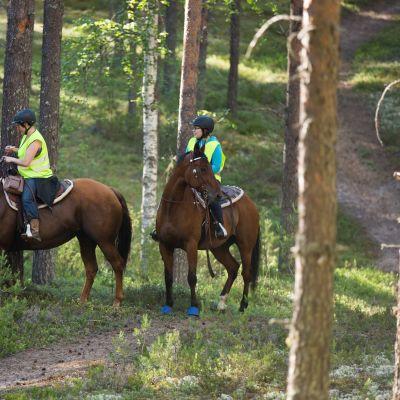 Hevonen, ratsastus