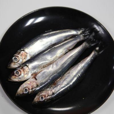 Voiko kalaa syömällä vähentää sinilevää – silakasta tehty kalajauho kiertää ruokapöydällesi
