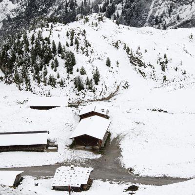 Kuvassa on luminen maa Tirolissa.