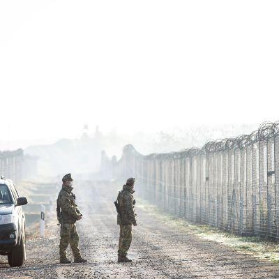 Unkarilaiset sotilaat partioivat Unkarin ja Serbian välisellä rajalla marraskuussa.