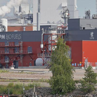 UPM Kaukaan tehdas.