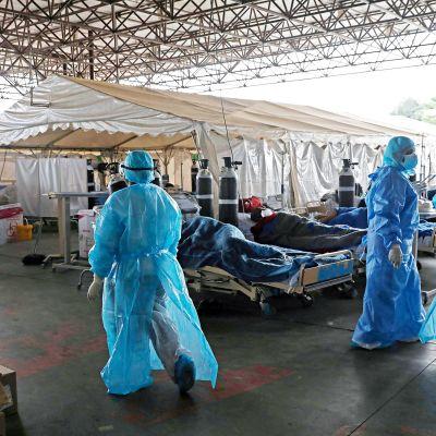 Suojavarusteisiin pukeutuneet terveydenhoidon työntekijät työskentelevät ulos pystytetyllä sairaalaosastolla.