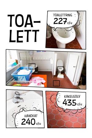 Bilder olika ytor på toaletten på daghemmet och hur mycket bakterier de samlar: toalettring 227 cfu, handfat 240 cfu, golvet 435 cfu.