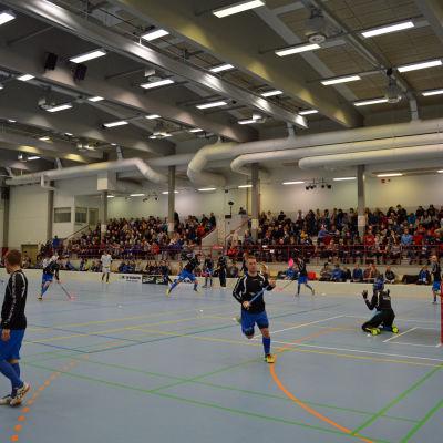 Blue Fox spelar sina hemmamatcher i Stjärnhallen i Nykarleby.