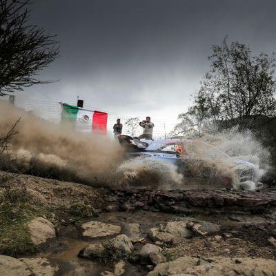 Meksikon MM-ralli