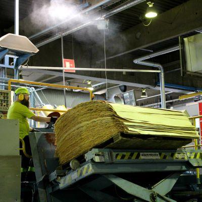 UPM Joensuun vaneritehtaan työntekijä koneella, joka käsittelee koivuviiluja.