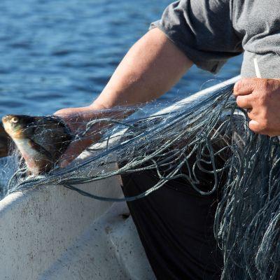 Vapaa-ajan kalastus.