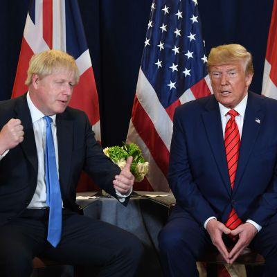 Donald Trump Boris Johnson tapasivat YK:n päämajassa New Yorkissa 24. syyskuuta.
