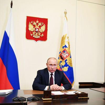 Kuvassa on presidentti Vladimir Putin.