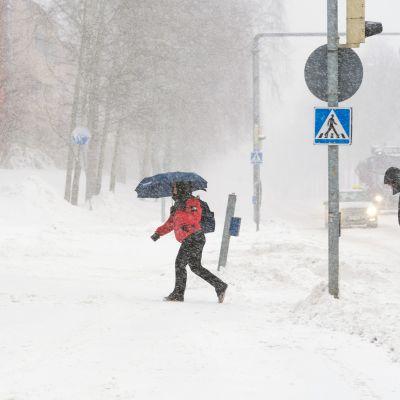 Ihmiset kävelevät lumimyräkässä.