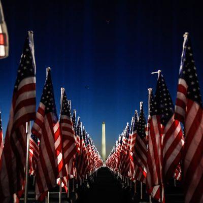 Amerikan lippuja