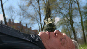 Peter Greenaway makaa ruoholla, perhonen kasvojen yllä. Kuva dokumenttielokuvasta The Greenaway Alphabet.