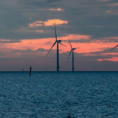 Tuulivoimaloita auringon laskun aikaan.