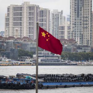 Rahtialuksia joella. Taustalla on kerrostaloja. Salossa liehuu Kiinan lippu.