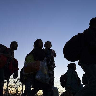 Pakolaisia matkalla iltahämärässä.