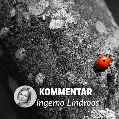 Ingemo Lindroos kommentar av SFP