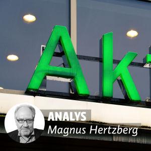analys, magnus hertzberg