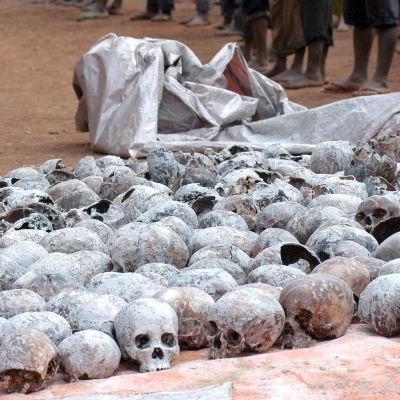 skallar från offer för folkmordet i rwanda