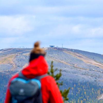 Matkailija katsoo Levitunturin huipulle