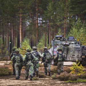 Varusmiehet kävelevät metsässä