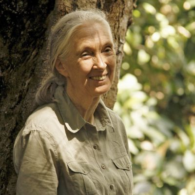 Med Jane i djungeln