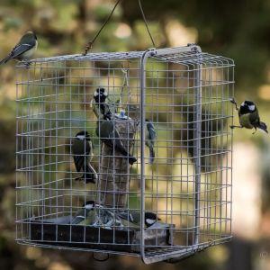 Fågelmatare omgiven av ett  skyddsnät av två hopfogade metallkorgar.
