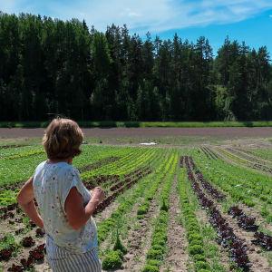 Ingrid Träskman som står med ryggen mot kameran vid sin grönsaksodling.