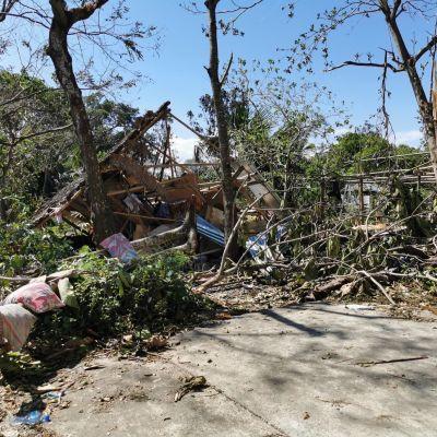 bambusta rakennettu talo on raunioitunut, edessä kaatuneita puita ja petivaatteita