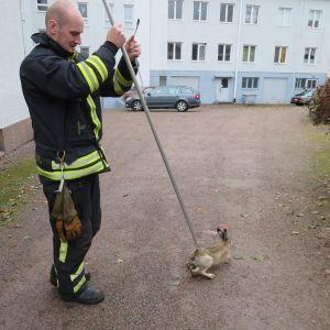 hare och brandman