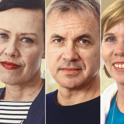 Kollage av Maarit Feldt-Ranta, Stefan Vikström, Anna-Maja Henriksson och David Björkström