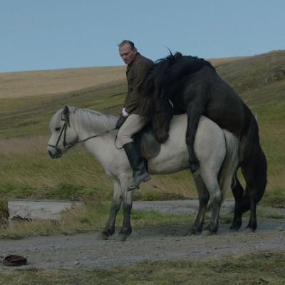 Bild från filmen Of Horses And Men.