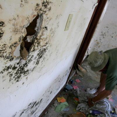 Herbert Hannon siivosi tyttöystävänsä autotallia hurrikaanin jäljiltä Louisianan osavaltiossa Yhdysvalloissa vuonna 2005. Home oli vaurioittanut seiniä pahasti.
