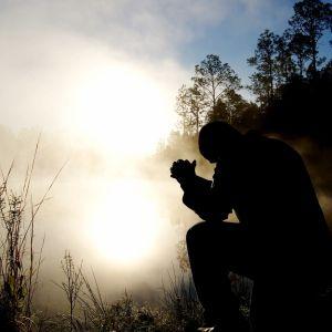 siluett av en sittande person mot reflekterade solljus.