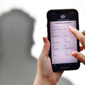 En hand håller i en telefon där skärmen visar en corona-app.