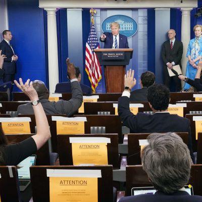 Donald Trump tiedotustilaisuudessa Washingtonissa.