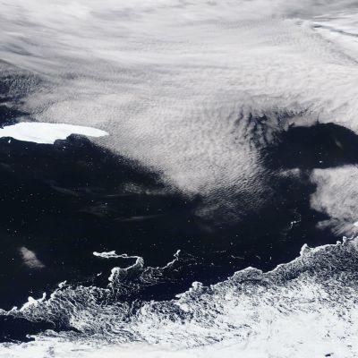 NASA Worldviewn julkaisema kuva A68-jäävuoresta ajelehtimassa Etelämantereen ja Etelä-Georgian saaren välillä Etelä-Atlantilla 4. marraskuuta. Jäävuori on kirkkaanvalkoinen alue kuvan vasemmassa reunassa.