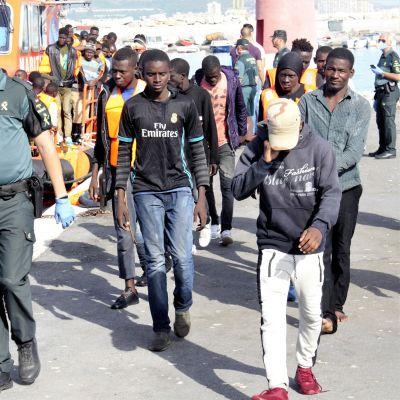 Heinäkuussa 40 kahdessa eri veneessä Pohjois-Marokosta tullutta ihmistä ohjattiin Motrilin satamaan, Espanjan Granadaan.