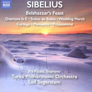 Turun filharmonisen orkesterin Sibelius-levy