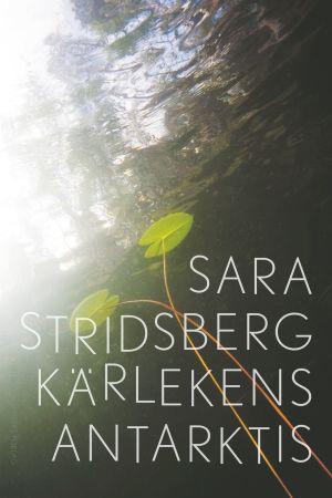 Pärmbild av Sara Stridsbergs roman Kärlekens antarktis