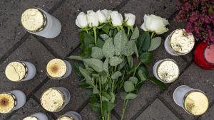 Ljust och vita rosor på marken fotade rakt uppifrån.