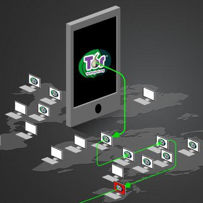 Internet-trafik som färdas över Tor-nätet