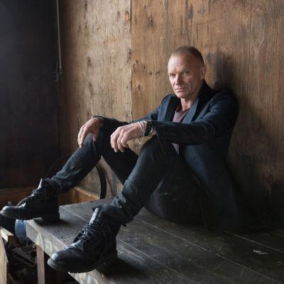Sting: Viimeinen laiva.