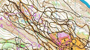 Orienteringskarta
